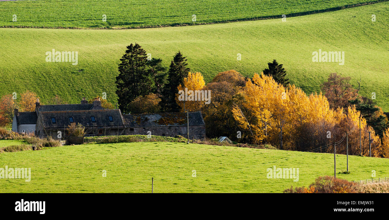 Rolling green fields, autumn colours, and farm in the Scottish Highlands near Ullapool. - Stock Image