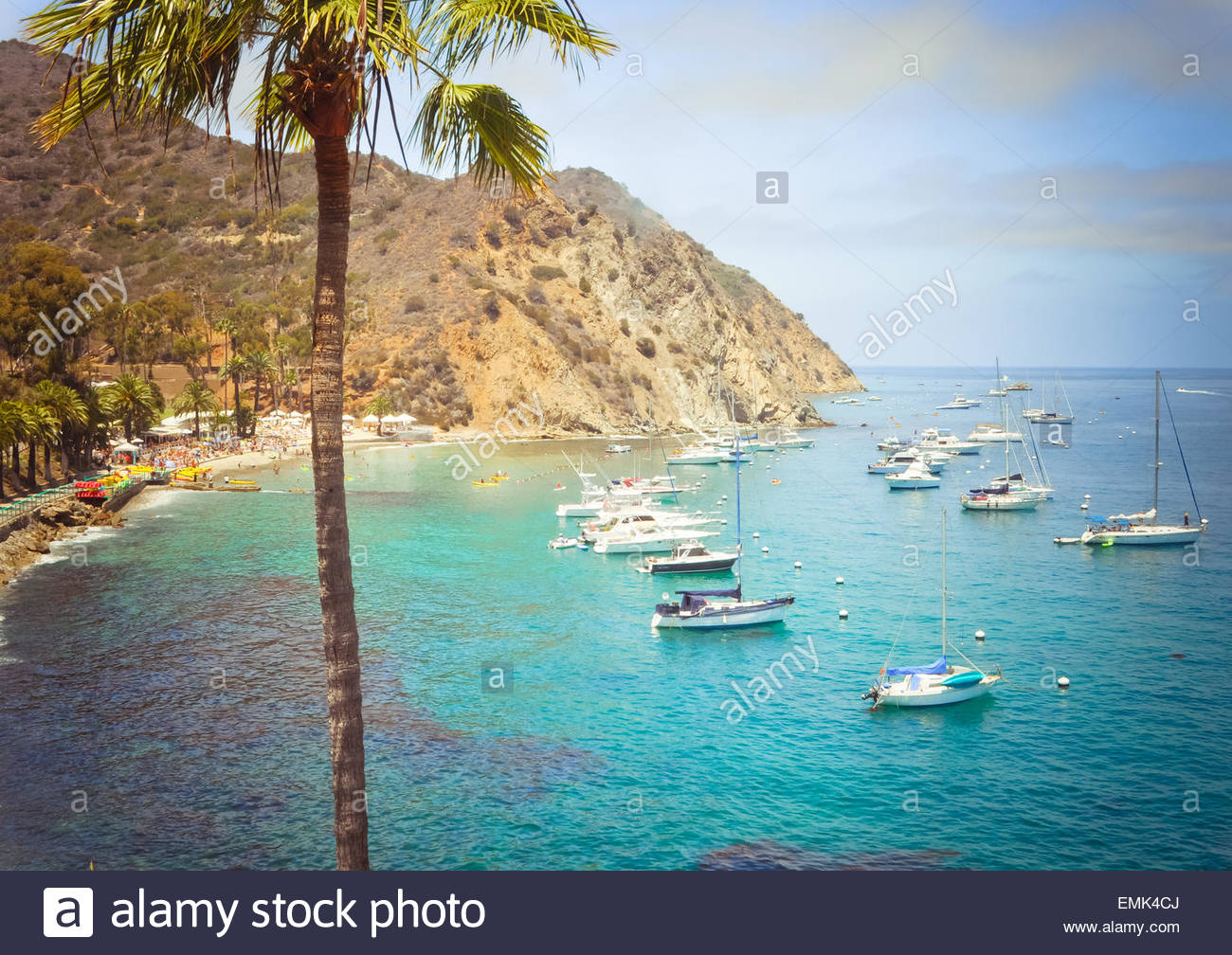 Sailboats in turquoise bay with barren hill and palm tree - Stock Image