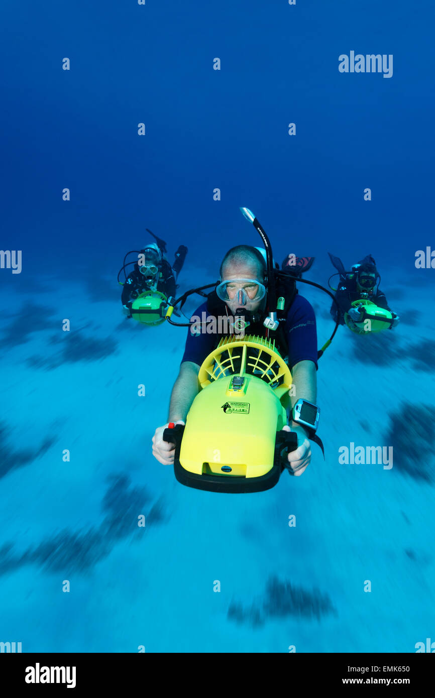 Divers with diver propulsion vehicles exploring a coral reef, Soma Bay, Hurghada, Egypt, Red Sea - Stock Image