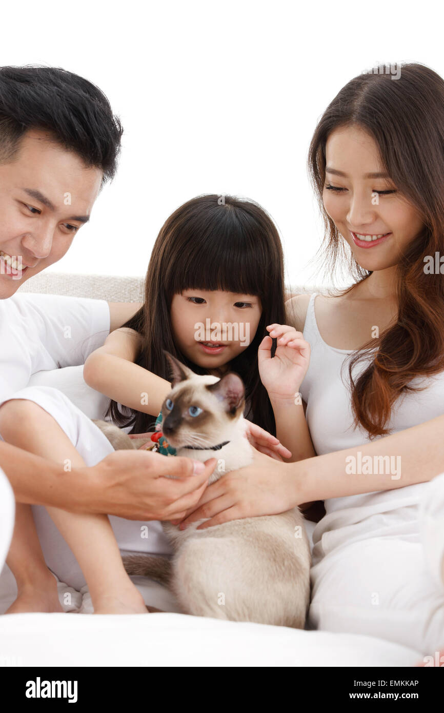The joy of a family of three and pets play together - Stock Image