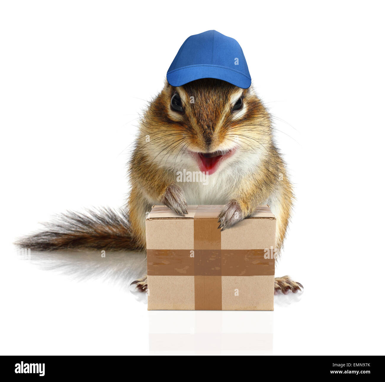 comical chipmunk courier hold parcel, delivery concept - Stock Image