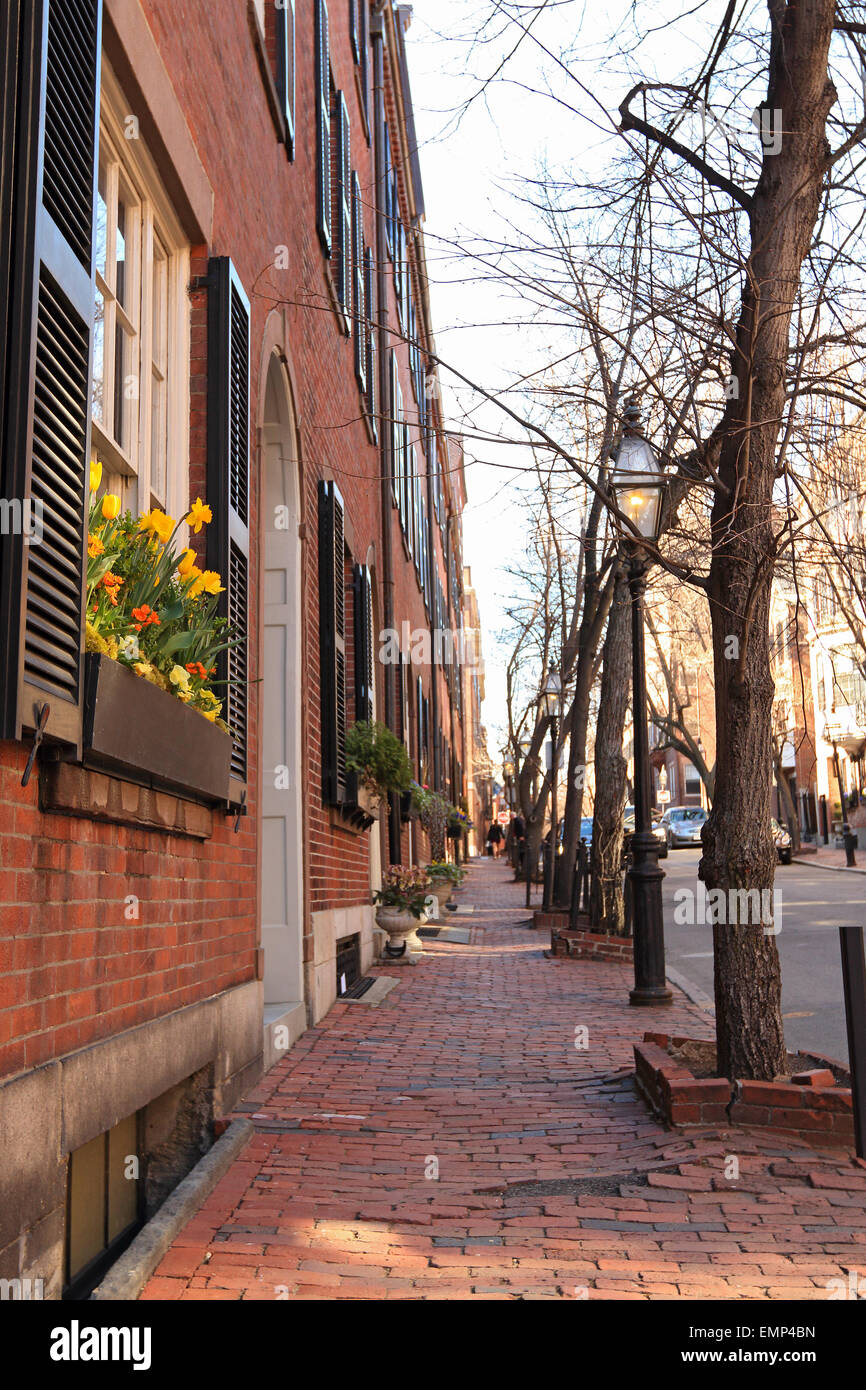 Boston Massachusetts Beacon Hill brick sidewalk with front door and window flowers. - Stock Image