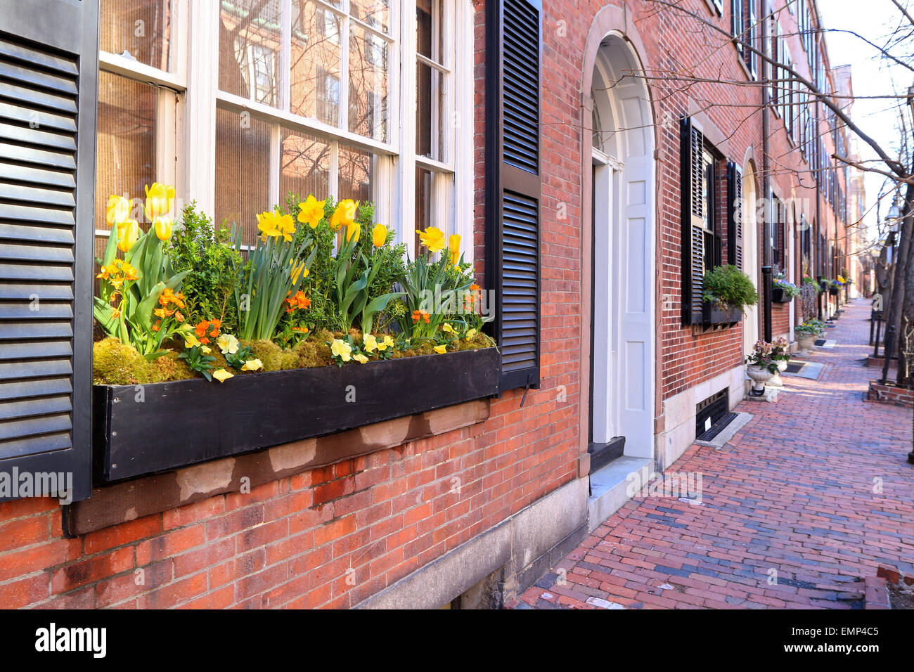 Boston Massachusetts Beacon Hill brick sidewalk with front door and flowers in window. - Stock Image