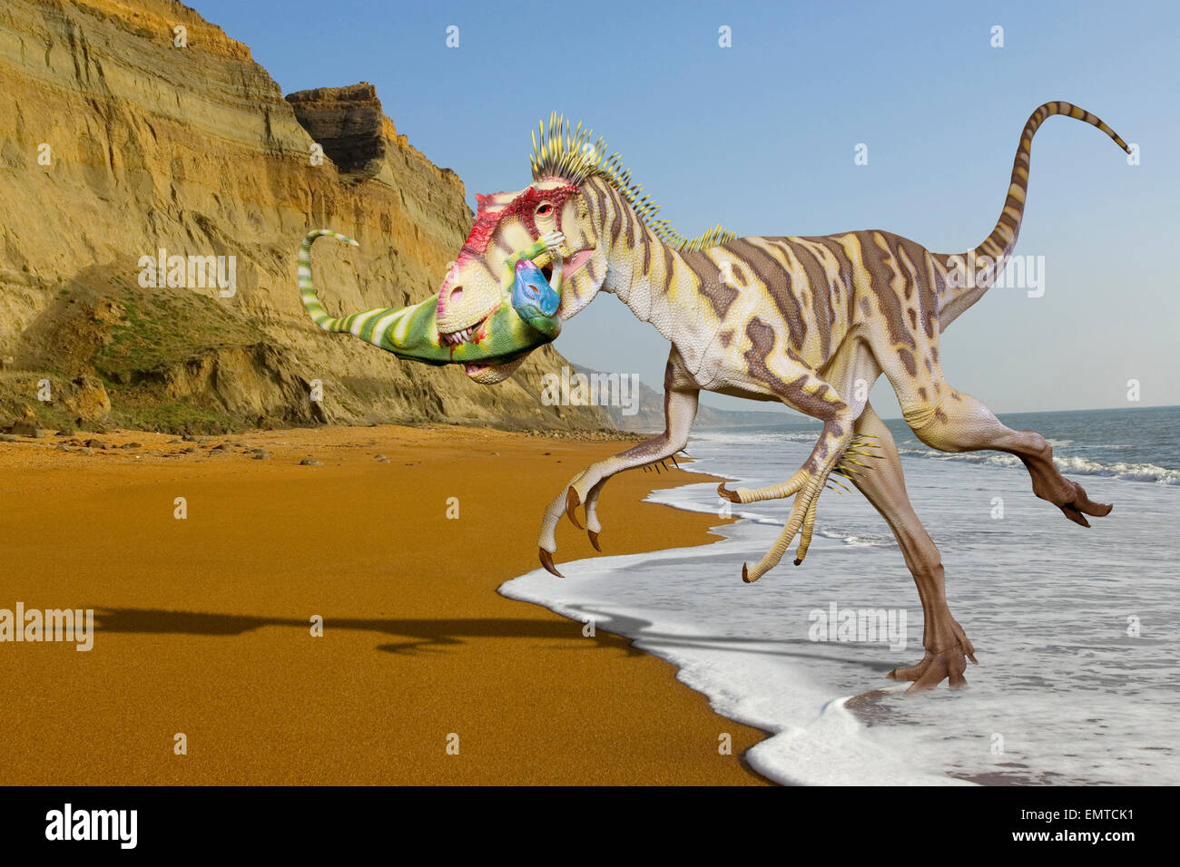 Photoshop Montage. Of Eotyrannus dinosaur on Chale Beach Isle of Wight England, an area where fossils of this species - Stock Image