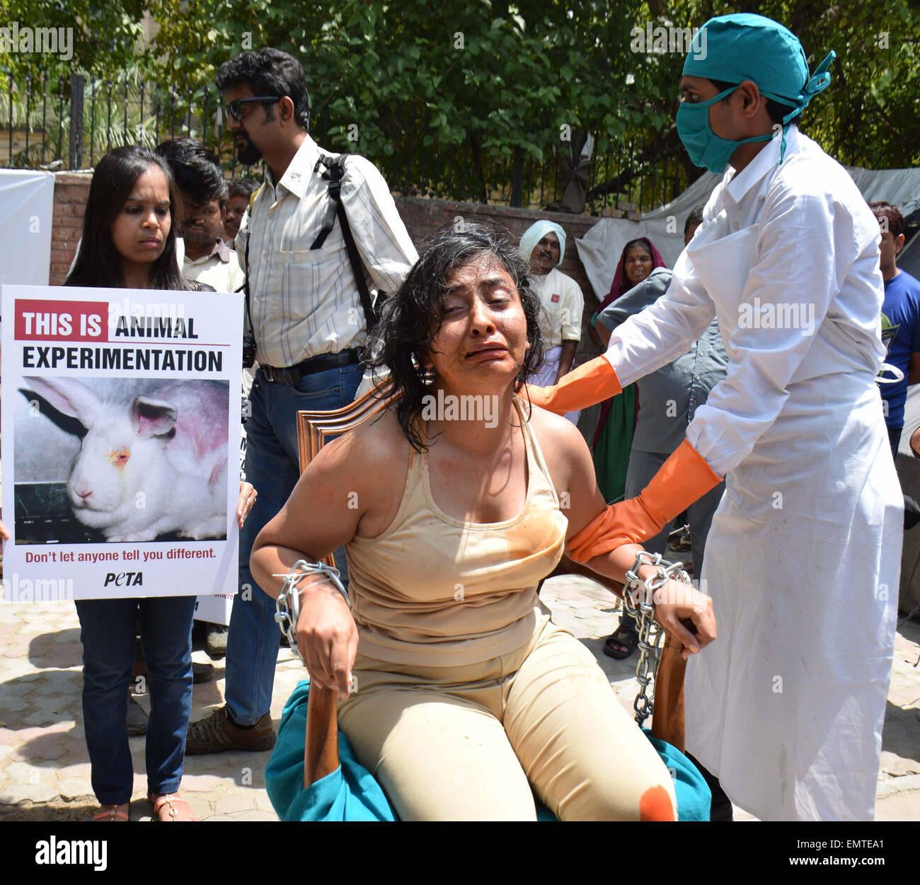 Peta Activists Stock Photos & Peta Activists Stock Images - Page 2 - Alamy