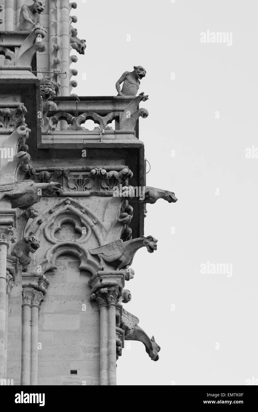 Gargoyles, Cathedral of Notre Dame, Paris, France - Stock Image