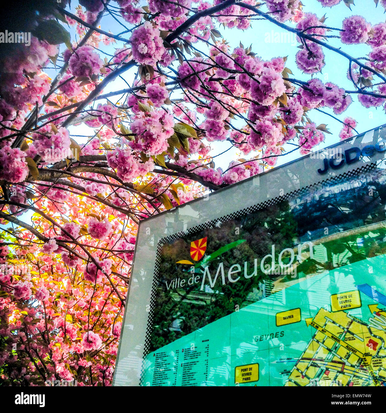 meudon france paris suburbs detail town sign with map cherry blossom tree