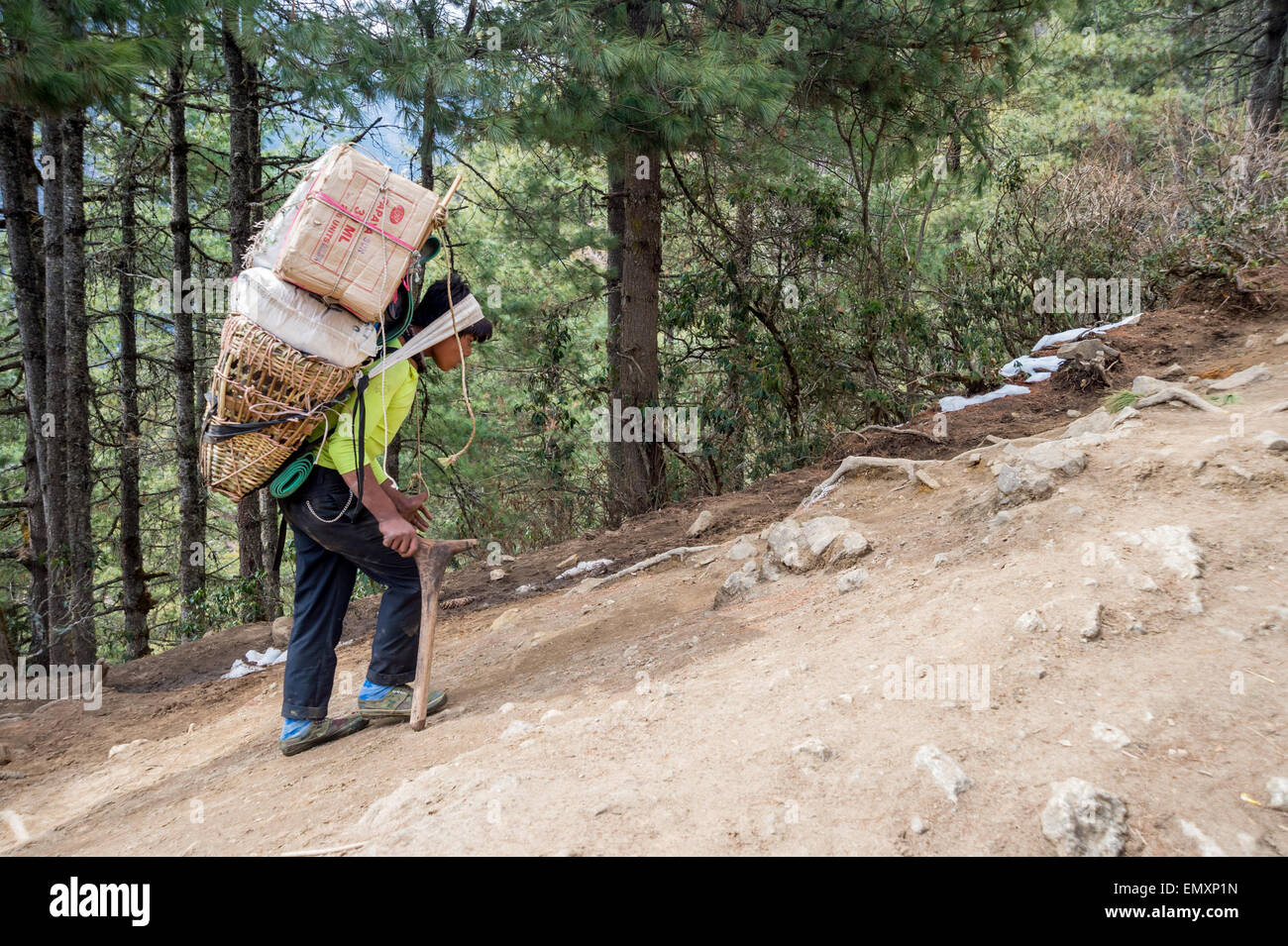 Lateral view of a Nepalese porter, carrying a heavy load, on his way to Namche Bazaar, Nepal - Stock Image