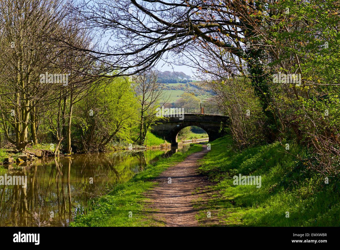 The Macclesfield Canal near Macclesfield, Cheshire, England UK - Stock Image