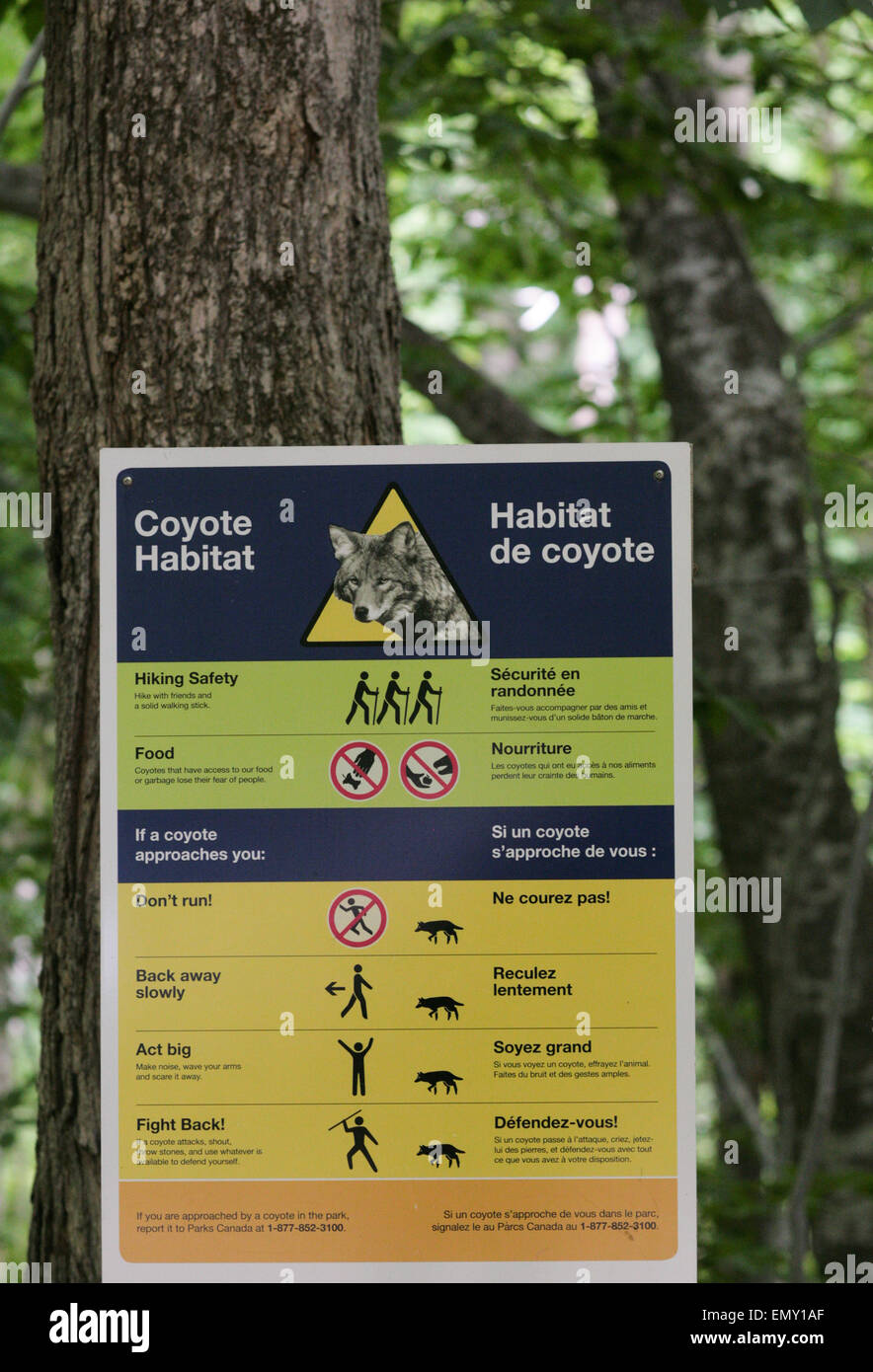 coyote control pack instructions