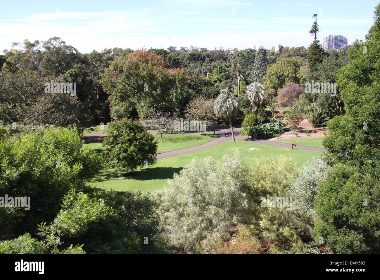 Sydney, Australia. 24 April 2015. The Royal Botanic Garden. Credit: Richard Milnes/Alamy Stock Photo