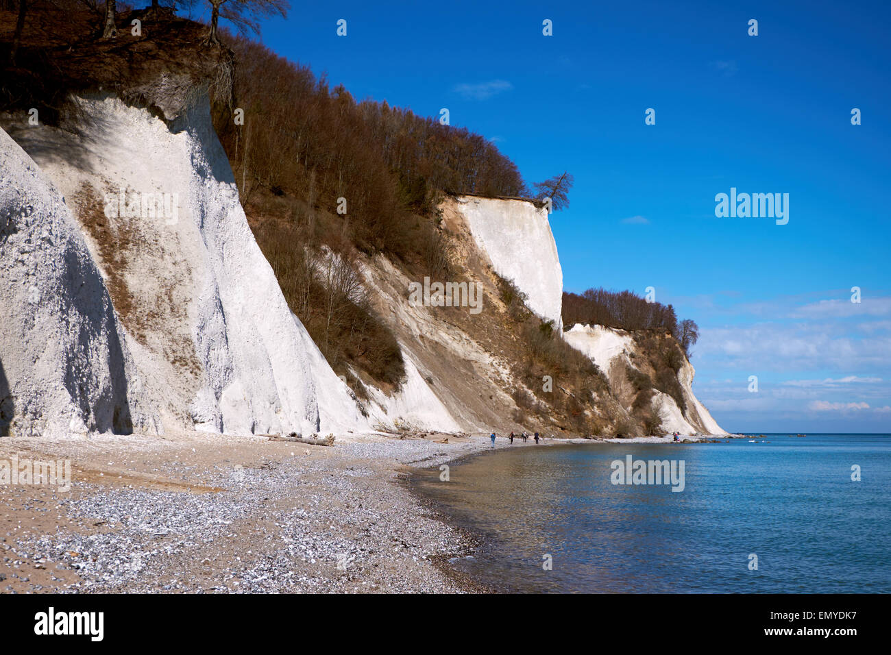 High chalk cliffs at the coast of Rugen island, Jasmund National Park Stock Photo