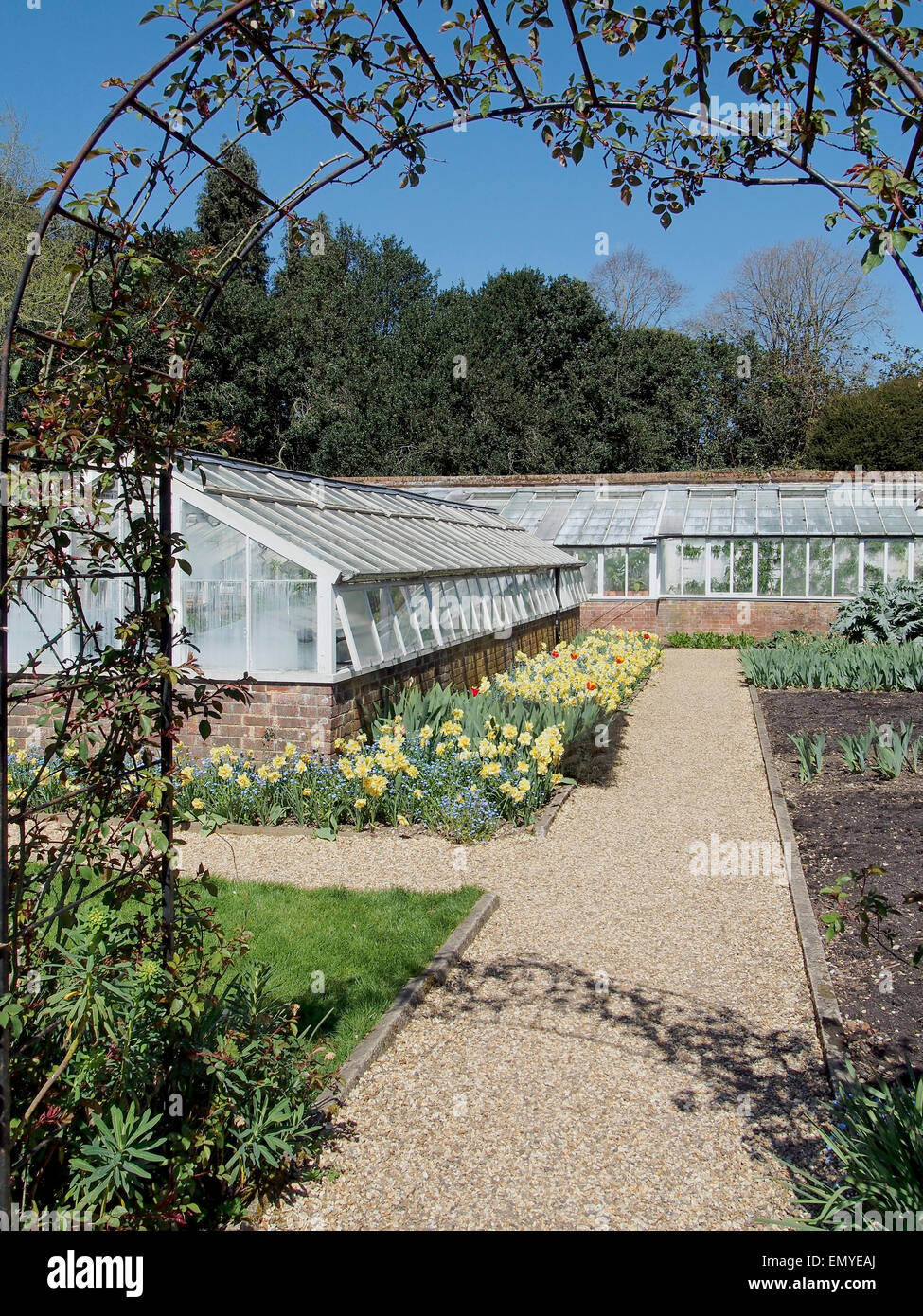 Traditional glasshouses (or greenhouses) within the walled garden of a large country house. - Stock Image