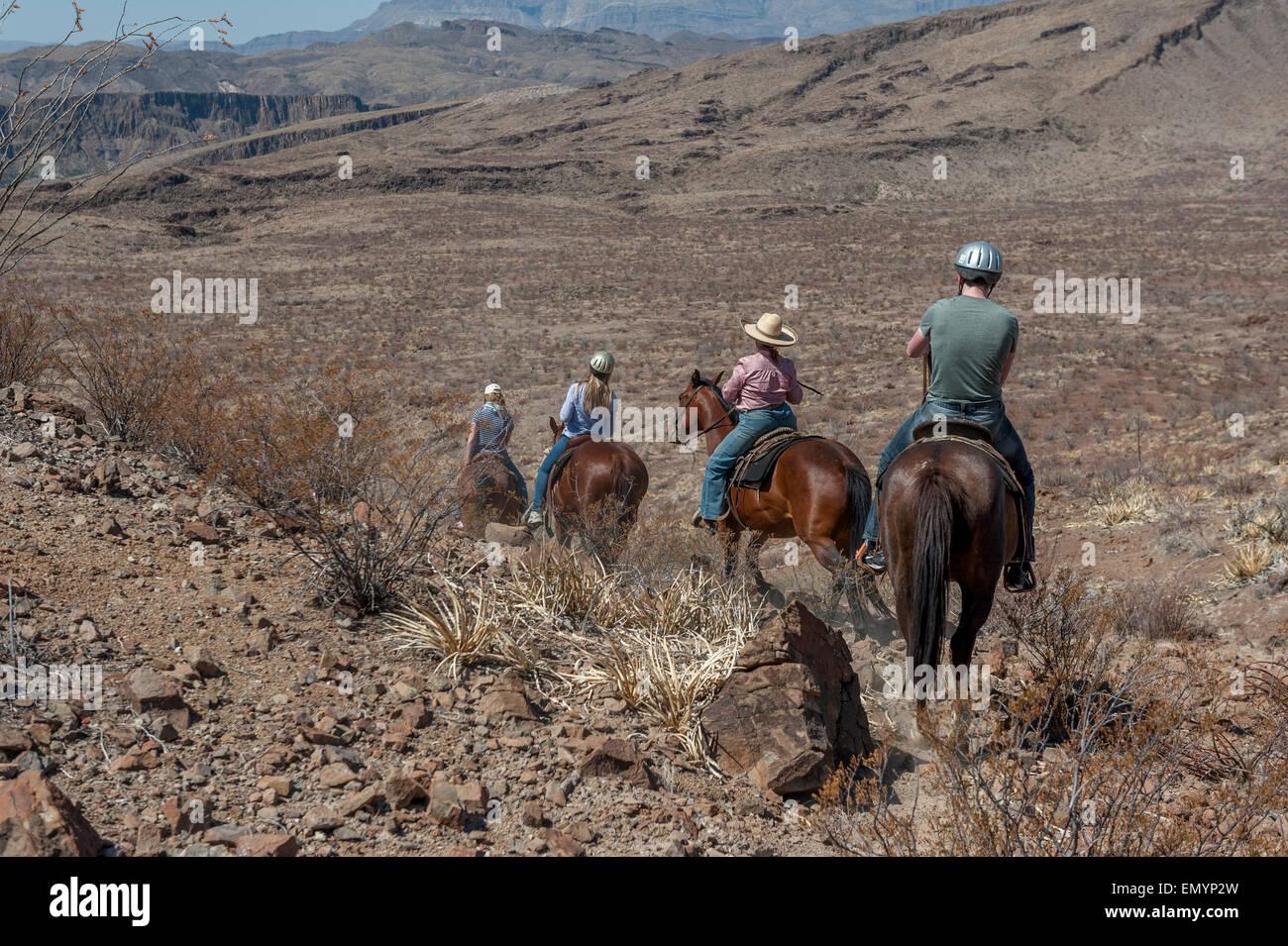 Big Bend Texas Horse Stock Photos & Big Bend Texas Horse ...