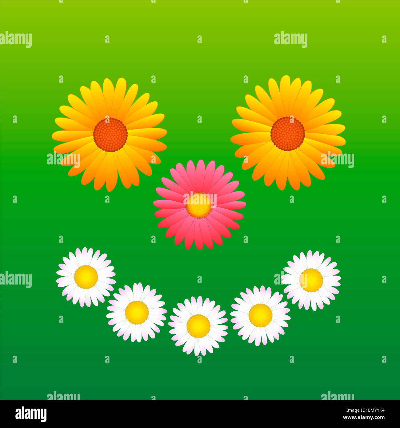 Daisy smiley face stock photos daisy smiley face stock images alamy flowers daisy aster marguerite that form a sunny smiling face izmirmasajfo