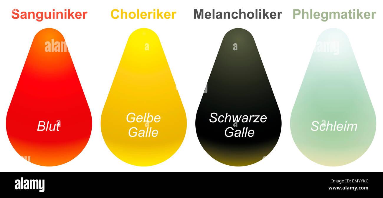 choleric sanguine phlegmatic melancholic