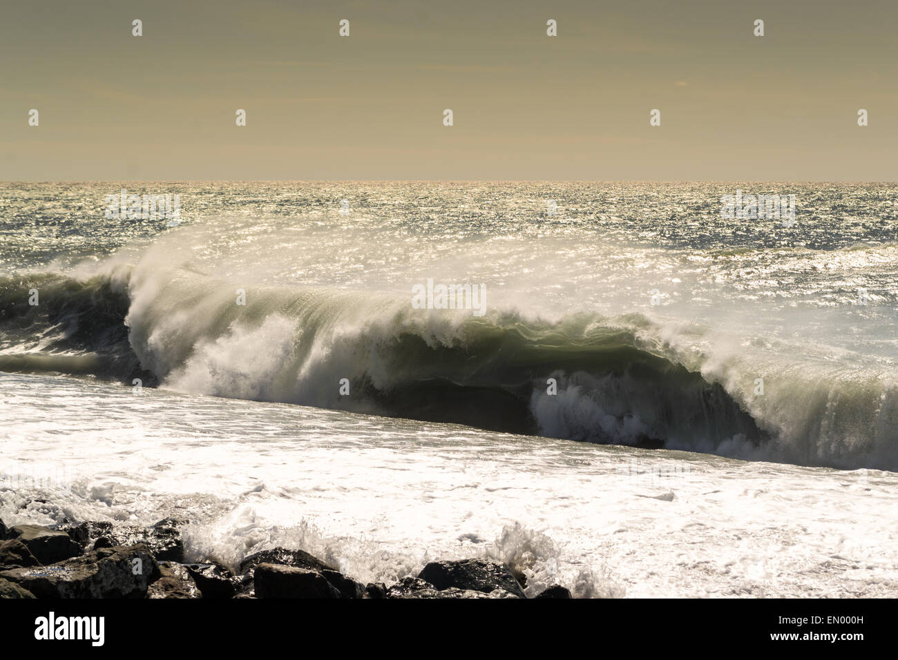 Rolling waves start to crest into a breaking wave onto a stony beach - Stock Image