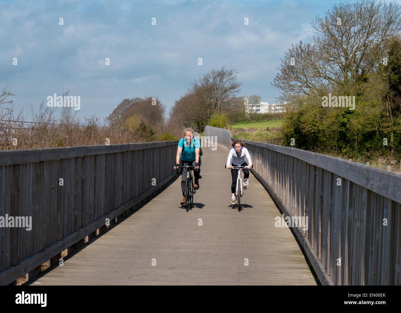 europe, uk, england, devon, Exe estuarycycle path - Stock Image