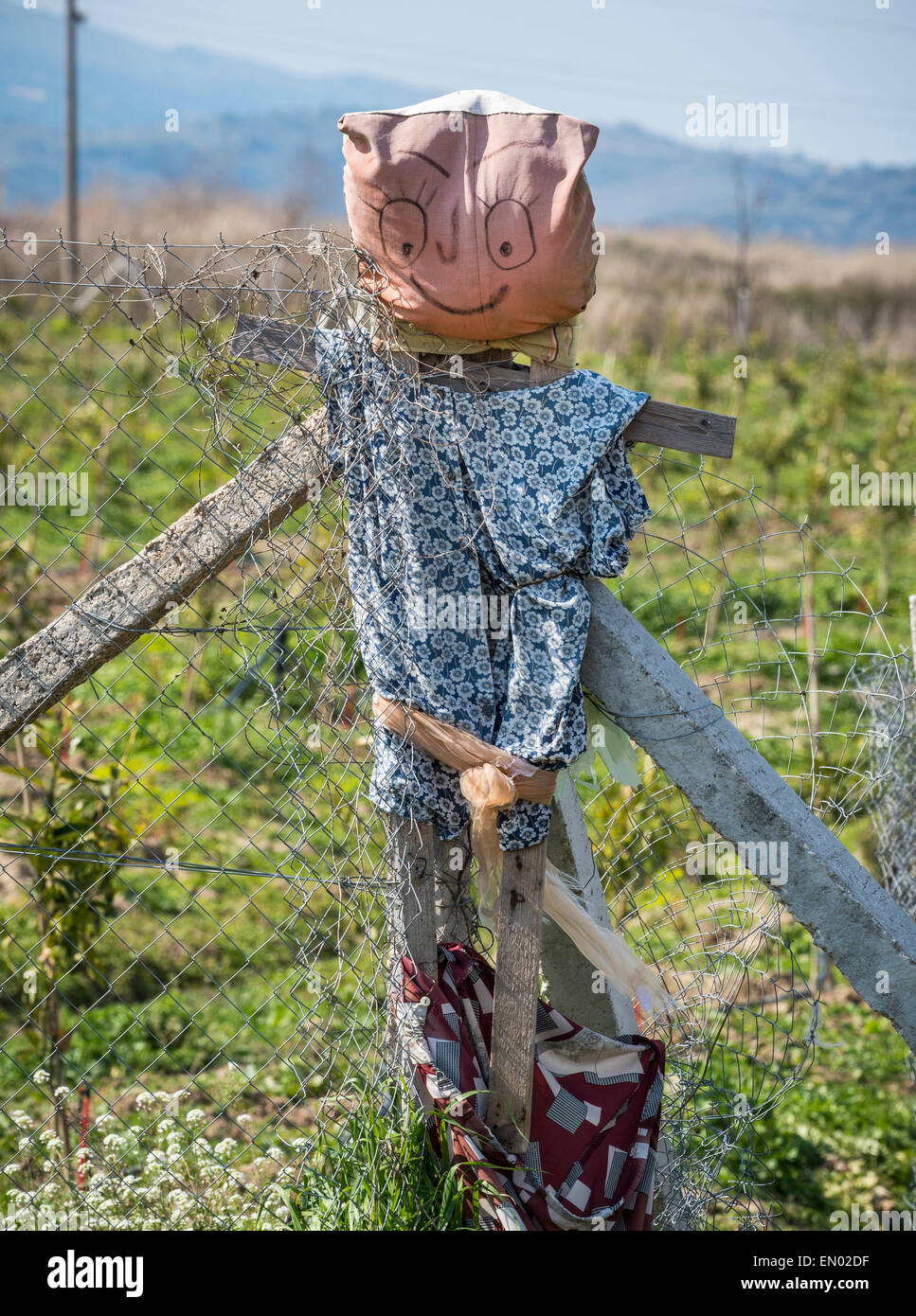 A dordolec, a rag doll or effigy hung at the corner of a field to ward off the evil eye,  a common sight in Southern - Stock Image