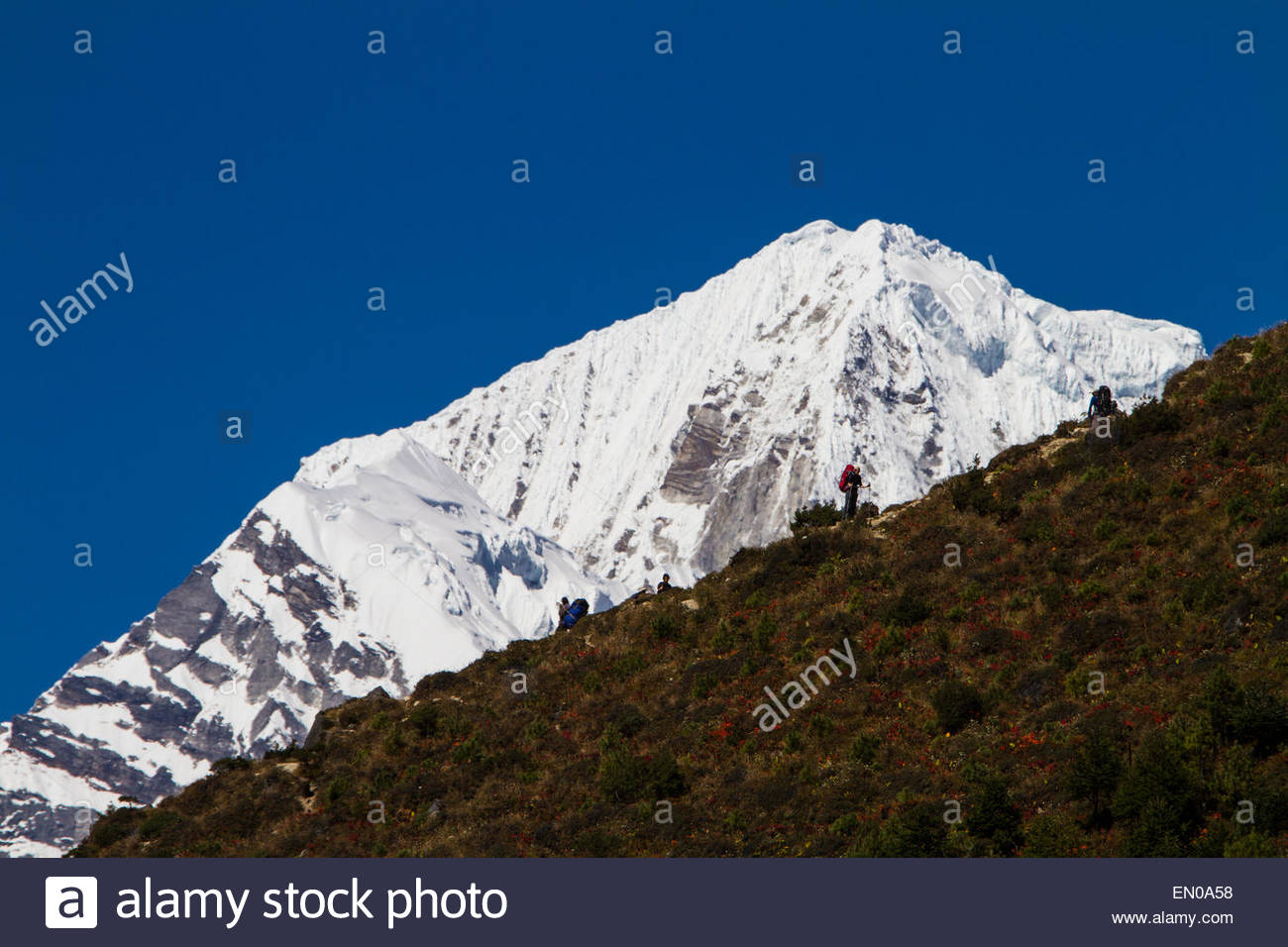 Trekkers in Nepal's Himalayas are seen along an uphill ridgeline with a snow capped peak in the background - Stock Image