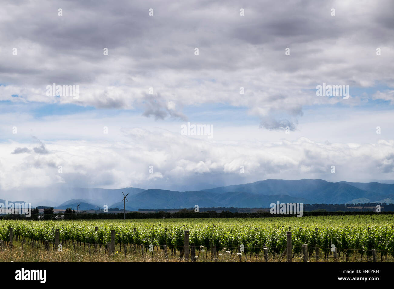 Rainclouds coming in over the Martinborough region of New Zealand. - Stock Image