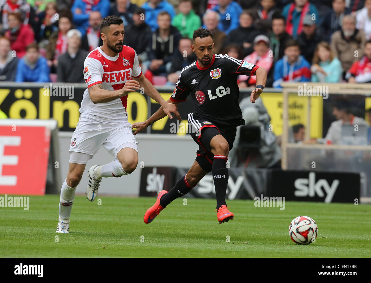 Cologne, Germany, 25Apr 2015. Bundesliga, 1. FC Koeln vs Bayer Leverkusen. Tackling between Karim Bellarabi (Leverkusen, - Stock Image
