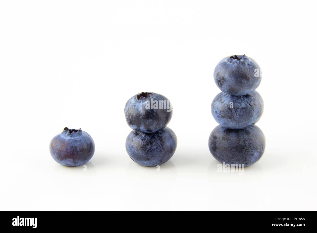 Growing up concept made of fresh blueberries - Stock Image