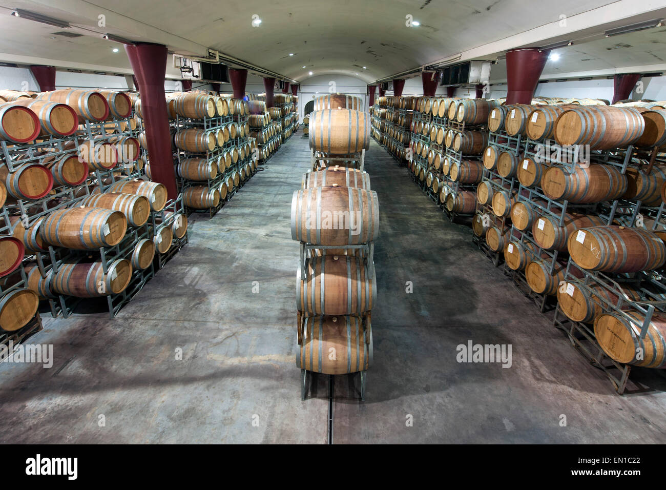 Wine barrels of the Boschendal winery in Stellenbosch, South Africa. - Stock Image