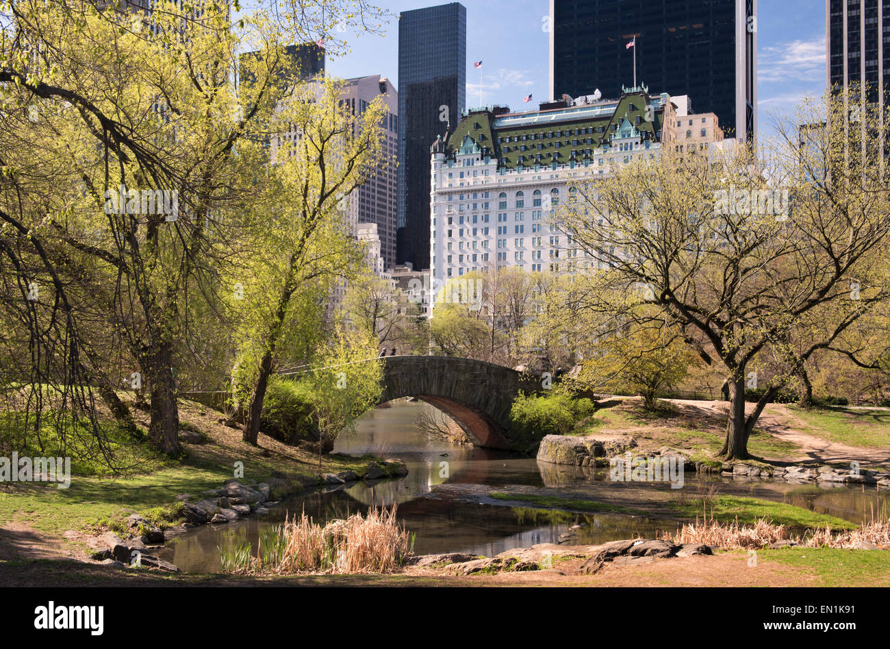 Central Park and the Plaza Hotel in Spring - Stock Image