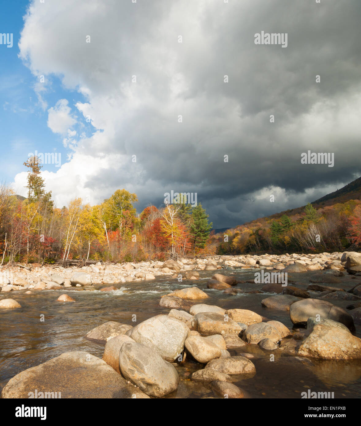 Sun highlights the autumn trees while dark clouds gather over the scenic cool, Pemigewasset River, Route 112, Bear Stock Photo
