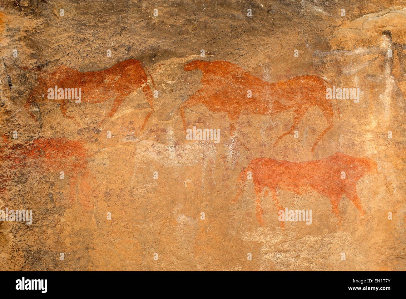 Bushmen (san) rock painting of antelopes, Karoo region, South Africa - Stock Image