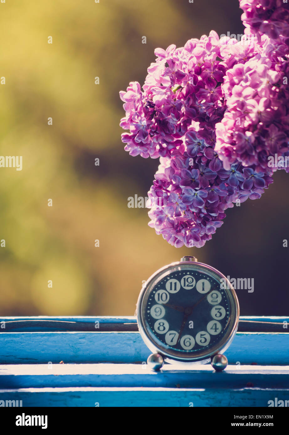 Branch of lilac flower on vintage elegant clock at the window. Natural light. - Stock Image