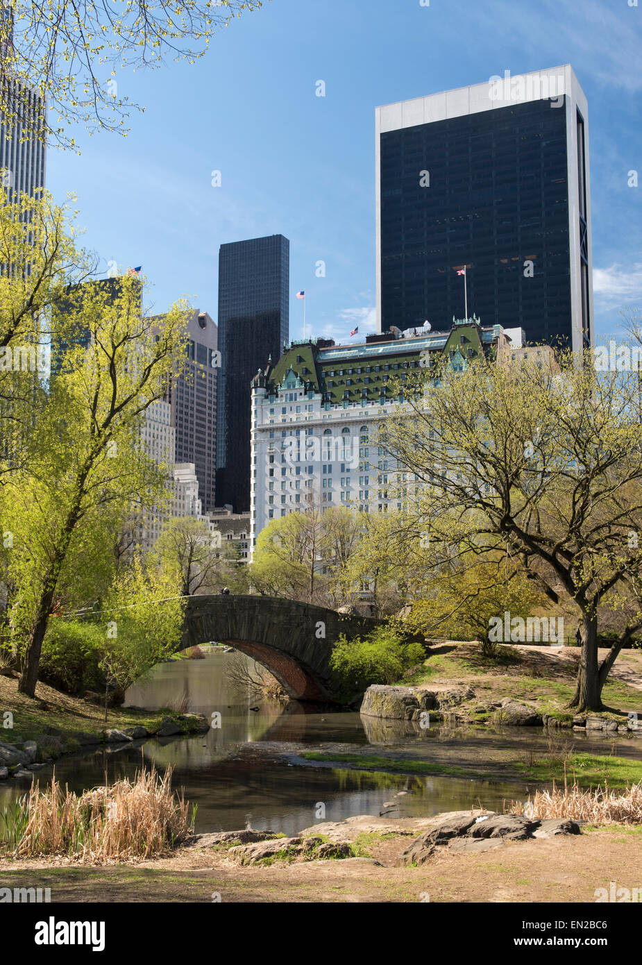 Central Park South and the Plaza Hotel in New York CIty - Stock Image