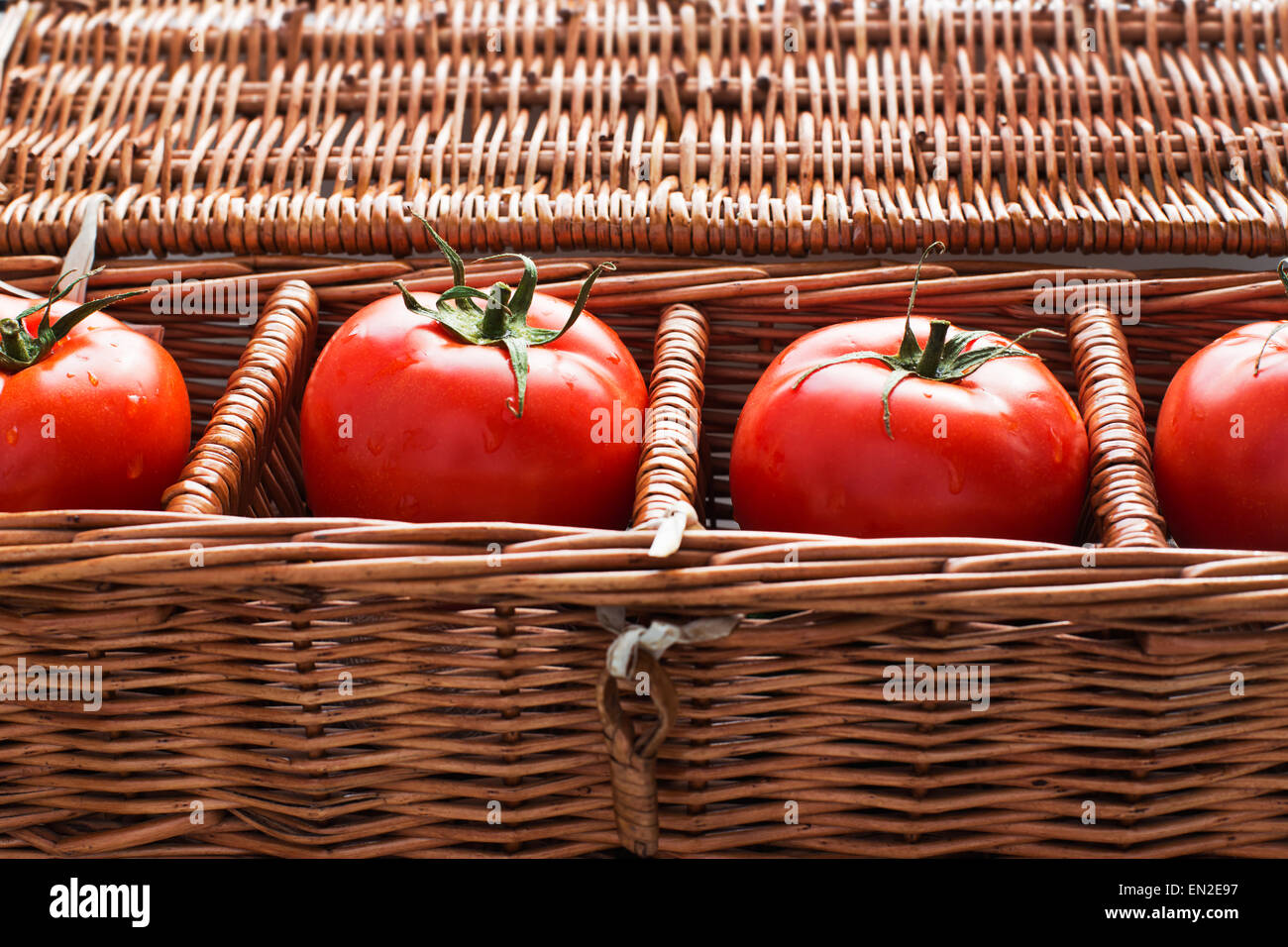 Four tomatoes with dew lying separately in wicker box - Stock Image