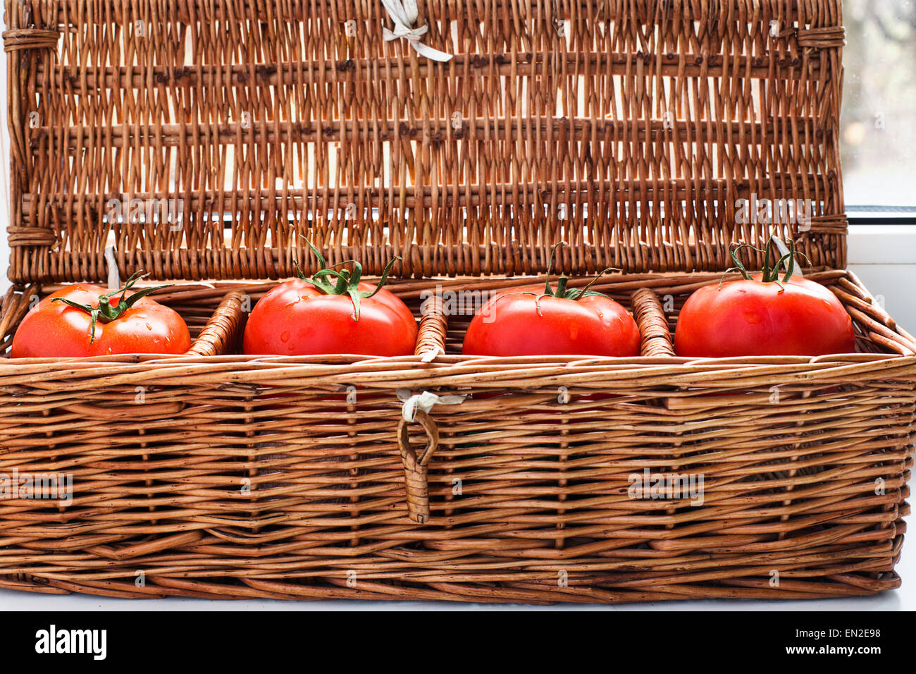Four tomatoes with dew lying separately in wicker retro box - Stock Image