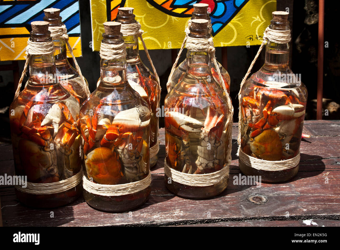 Olinda, Recife, Pernambuco, Brazil, pickled crabs in a bottle at a  street market - Stock Image