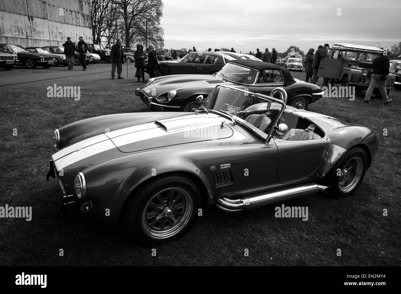 cobra car black and white stock photos images alamy. Black Bedroom Furniture Sets. Home Design Ideas