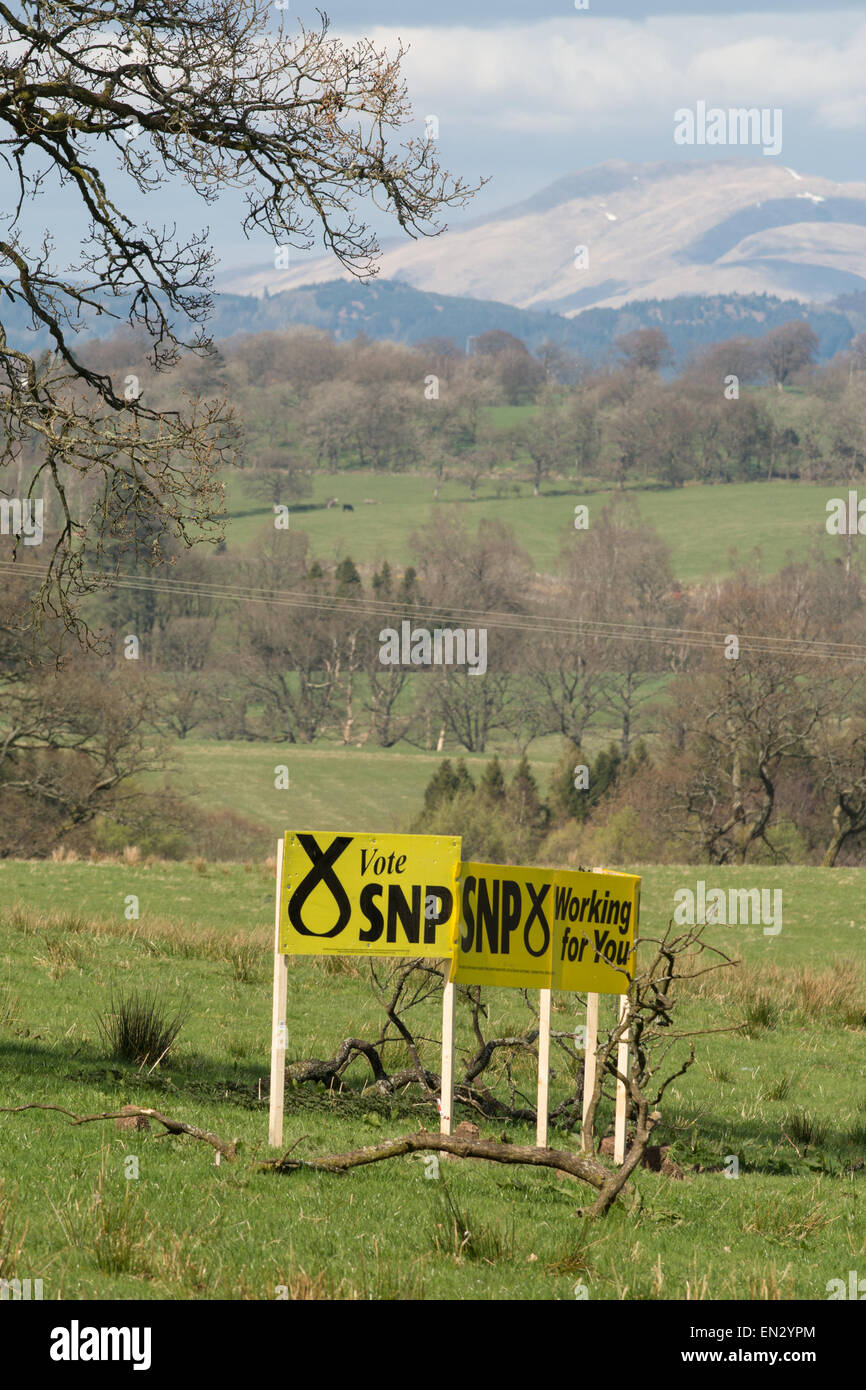 BALFRON, STIRLINGSHIRE, SCOTLAND, UK - APRIL 17, 2015: UK General Election - Large SNP signs in field - Stock Image