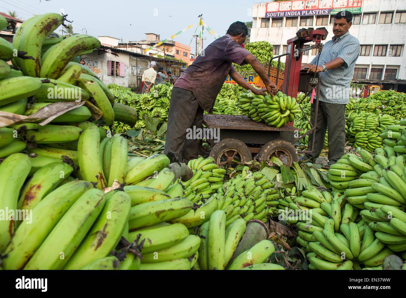 Banana sellers and workers weighing bananas on Broadway Market, Ernakulam, Kerala, India - Stock Image