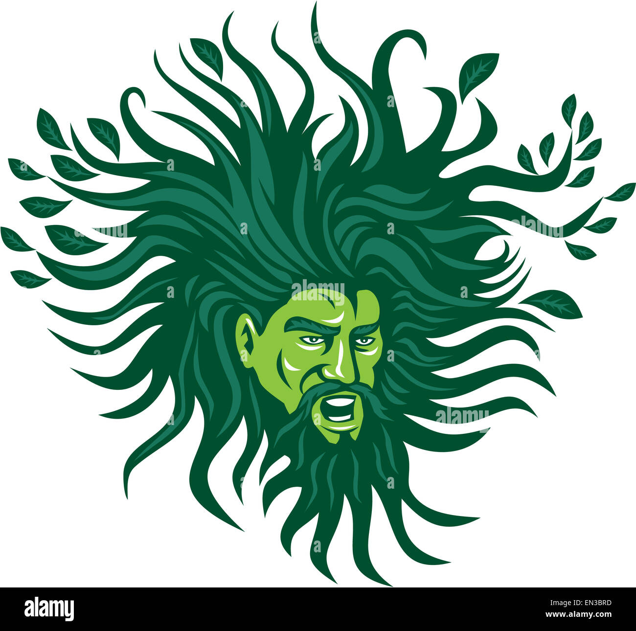 Illustration of a Green Man head face with flowing hair and leaves growing at tips viewed from front don ein cartoon - Stock Image