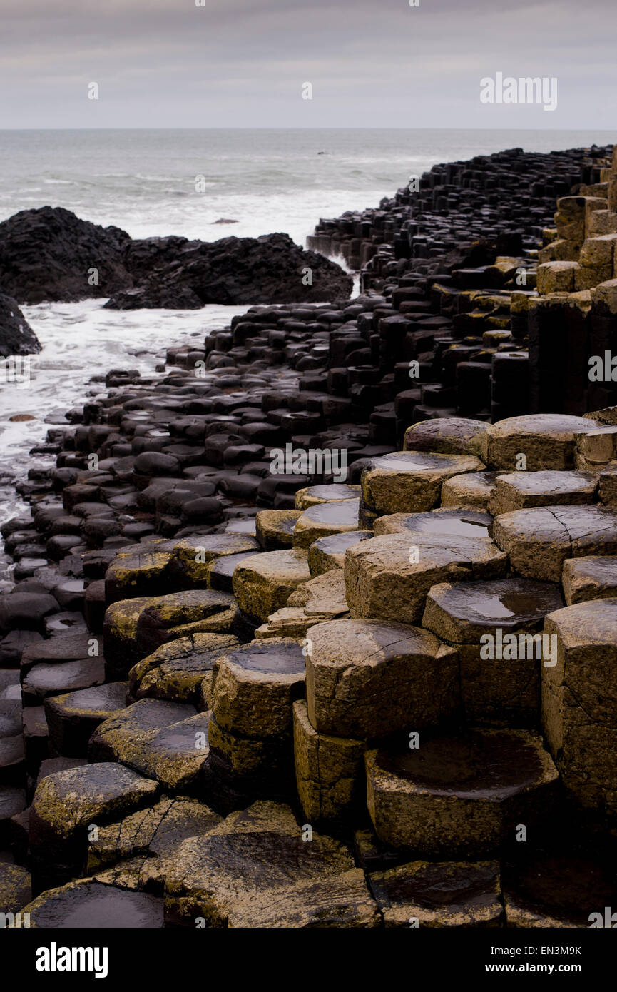 A view over the rocks at Giant's causeway in County Antrim on the northeast coast of Northern Ireland.  Credit: - Stock Image