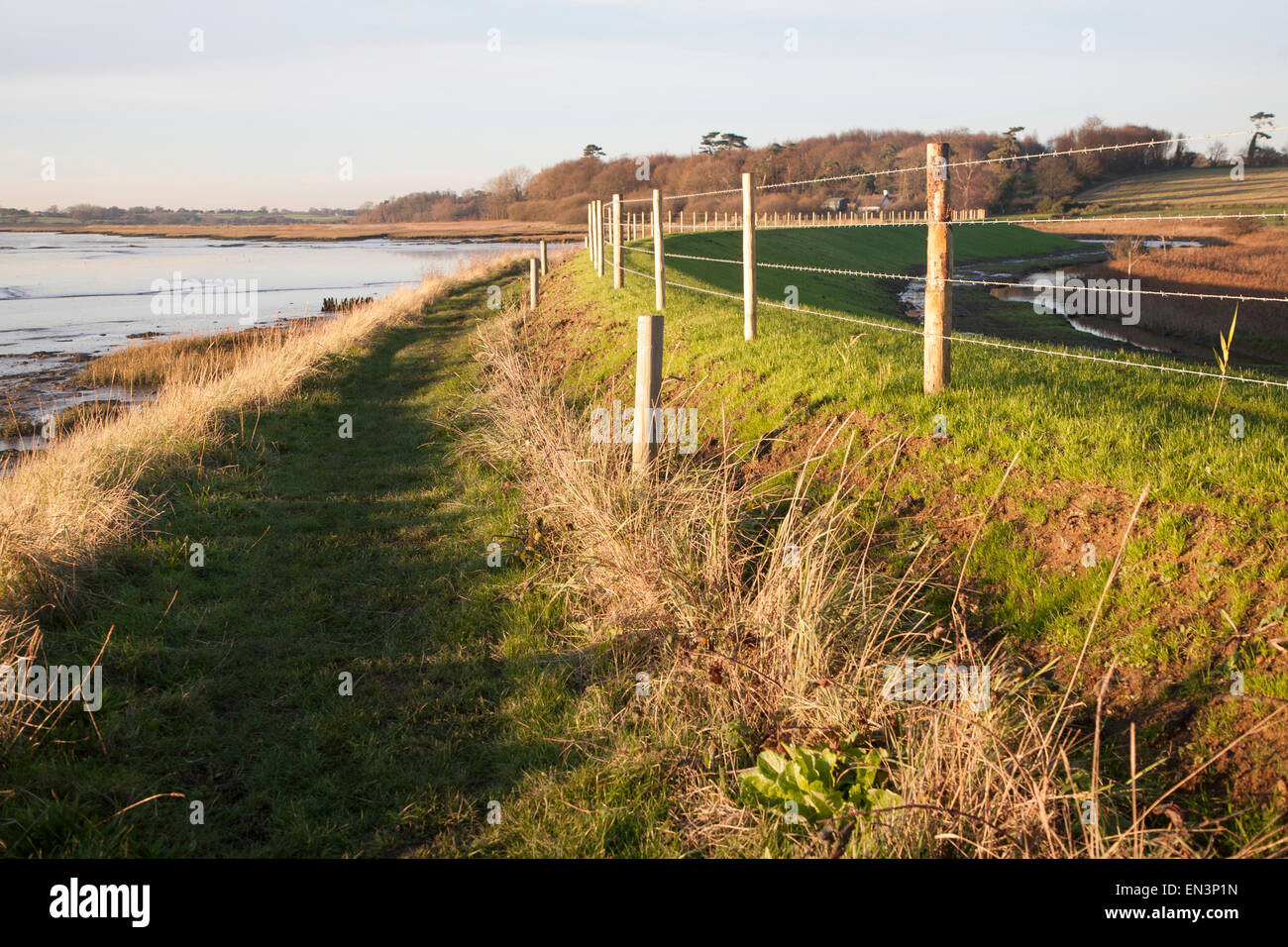Newly repaired river flood defence wall, River Deben, Ramsholt, Suffolk, England, UK - Stock Image