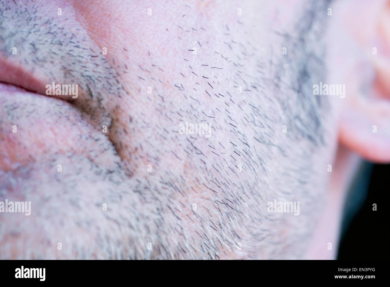 man face with beard - Stock Image