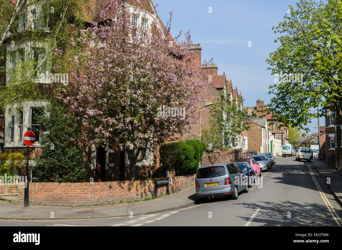 Longworth Road, a residential street in the Jericho area of Oxford - Stock Image