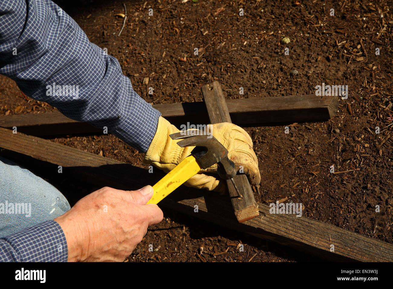 A homeowner constructs a sturdy trellis for his garden. - Stock Image