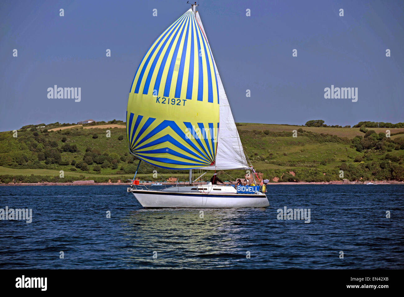 Yacht sailing cruising in blue sea flying spinnaker Plymouth Sound Devon Uk - Stock Image