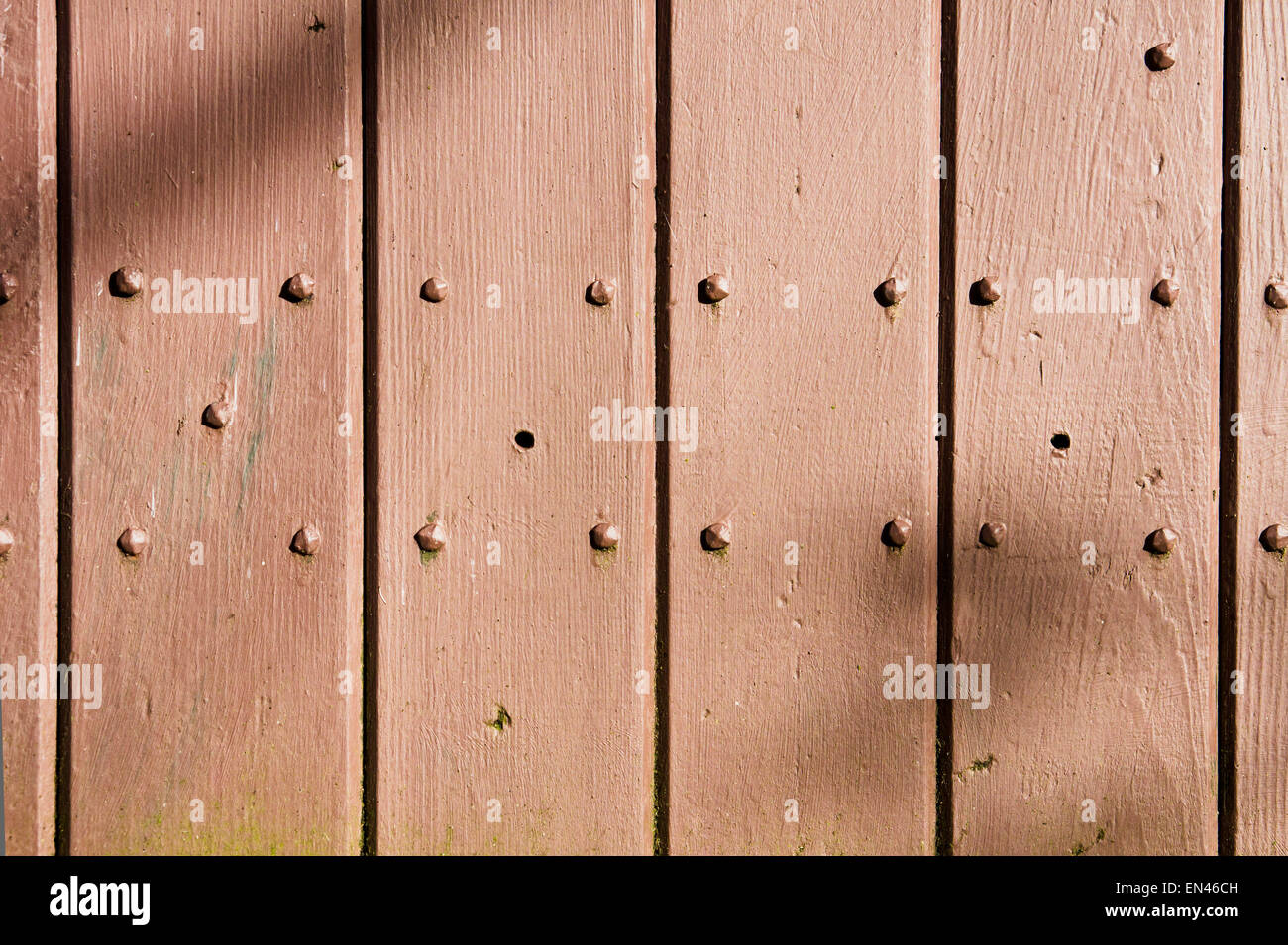 Painted wooden wall of a shed with bolts and dappled sunlight Stock Photo