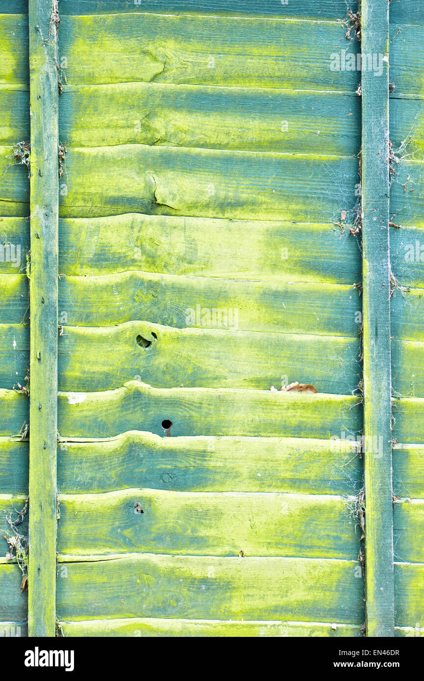 Yellow and green pattern on a weathered wooden fence, as a background Stock Photo