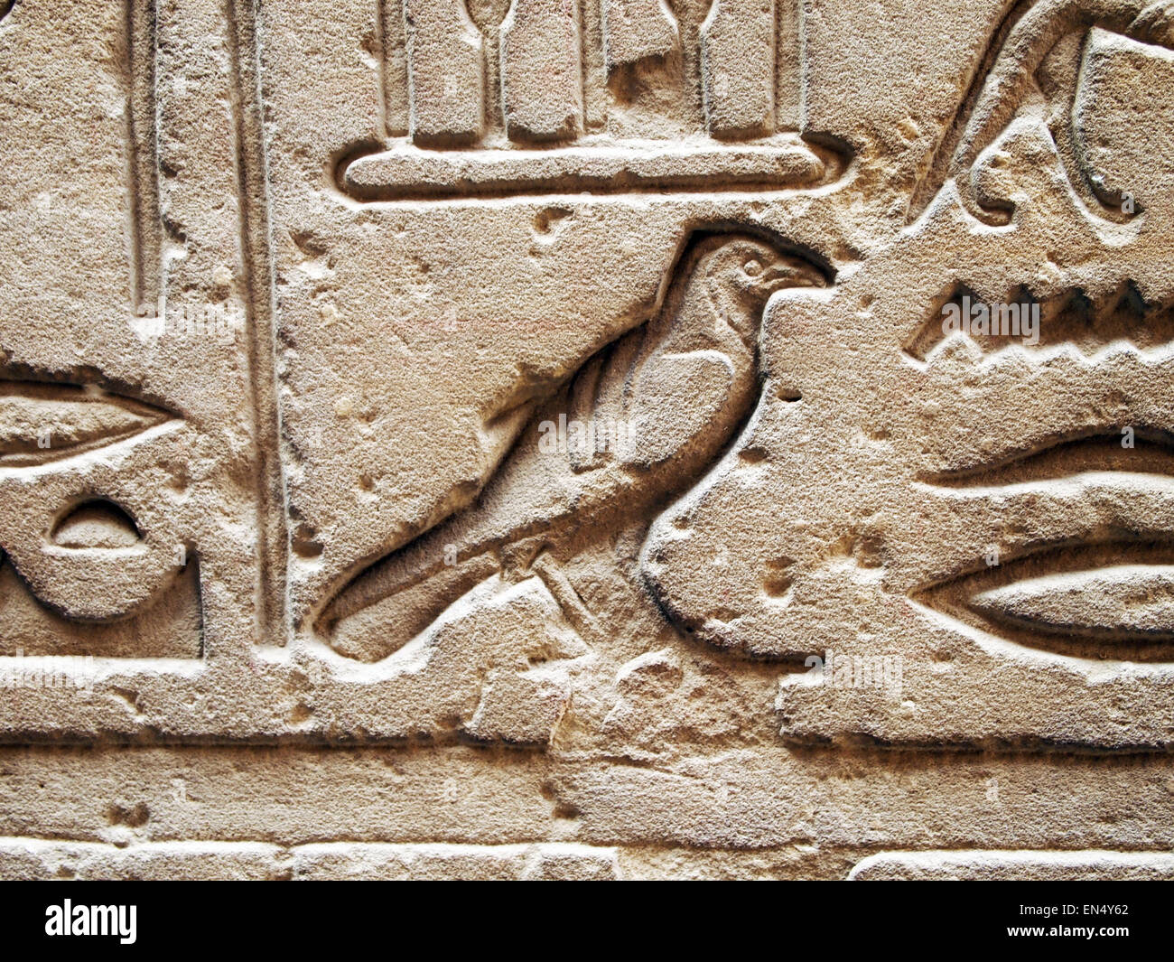 Bird hieroglyph in Egypt. Photography by Qin Xie. - Stock Image