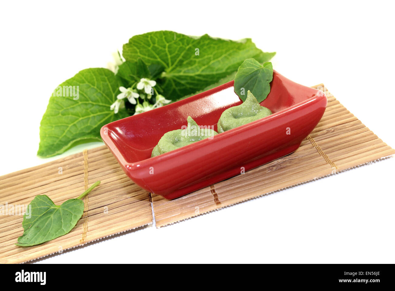 fresh Wasabi with leaf and flower in a red bowl Stock Photo